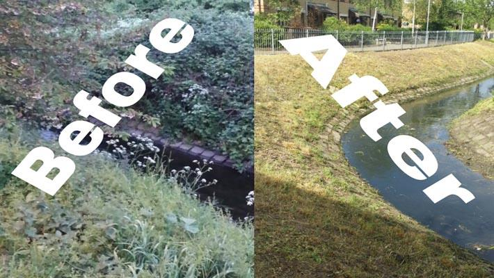 cleanliness-campaign-before-and-after