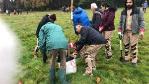 UK Sadh Sangat Doing Tree Planting