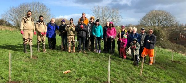 tree planting 29th feb 2020 in UK
