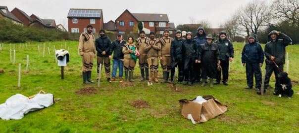 Tree Planting UK 15 Feb 2020