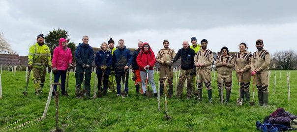 Tree Planting 20 Feb