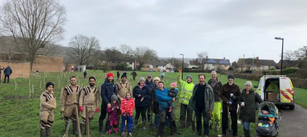 UK Tree Planting 22 Feb 2020