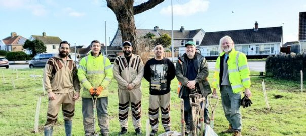 Tree Planting UK 1 March