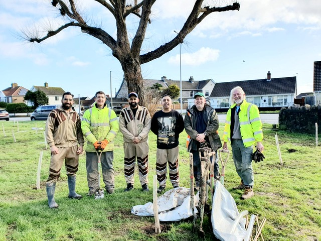 Tree Planting UK 1 March