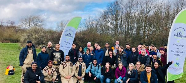 Tree Plantation in UK