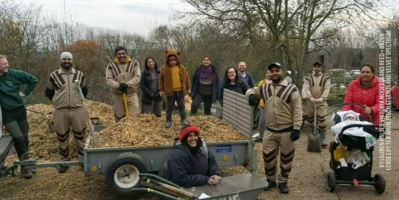 Tree Plantation UK