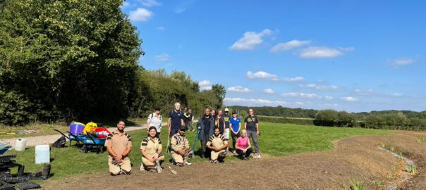 Tree Planting UK